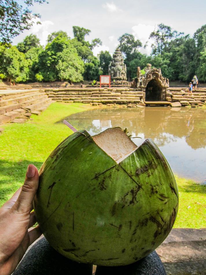 Coconuts at Angkor Wat