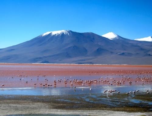 Uyuni Salt Flats Tour (Part 1)