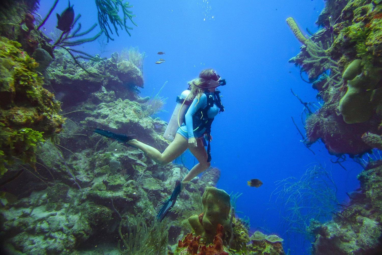 Blonde Girl Scuba Diving Gear Ocean