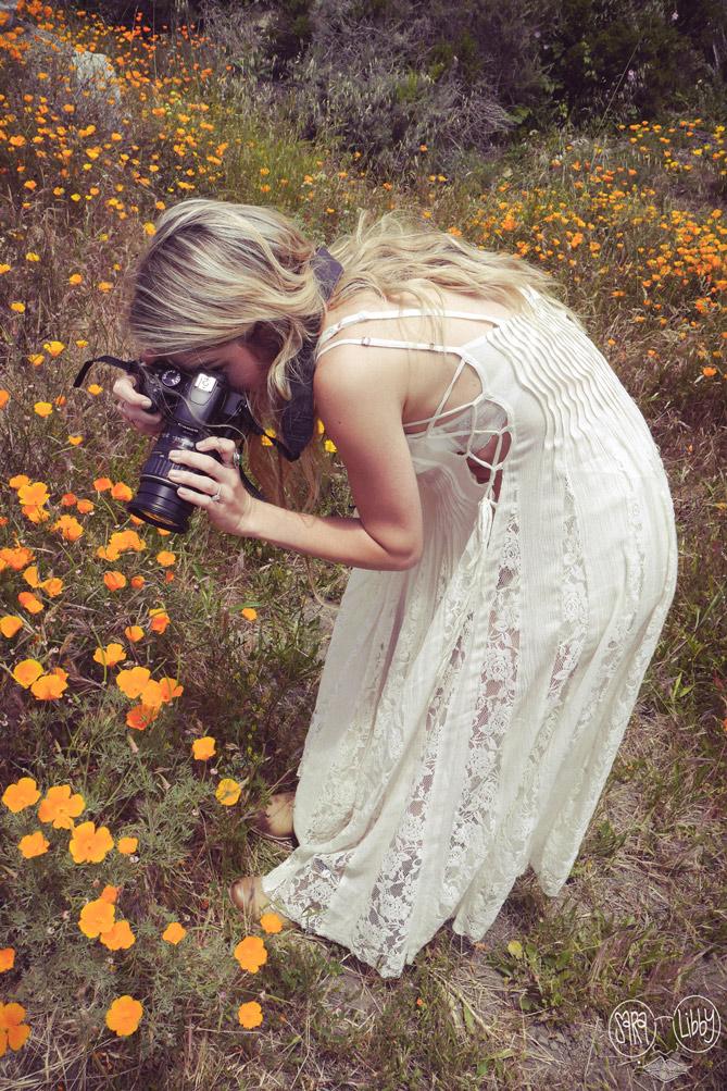 Big Sur Photography