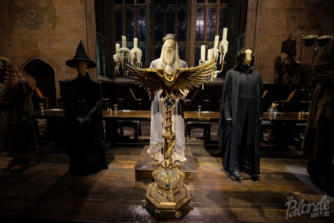 Professor Dumbledor and other Hogwart's Professors