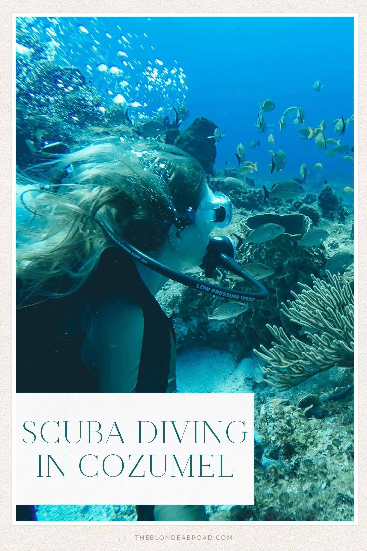 Scuba Diving in Cozumel with Scubatony