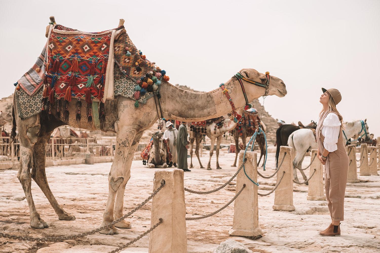 Kiersten Egypt Camel