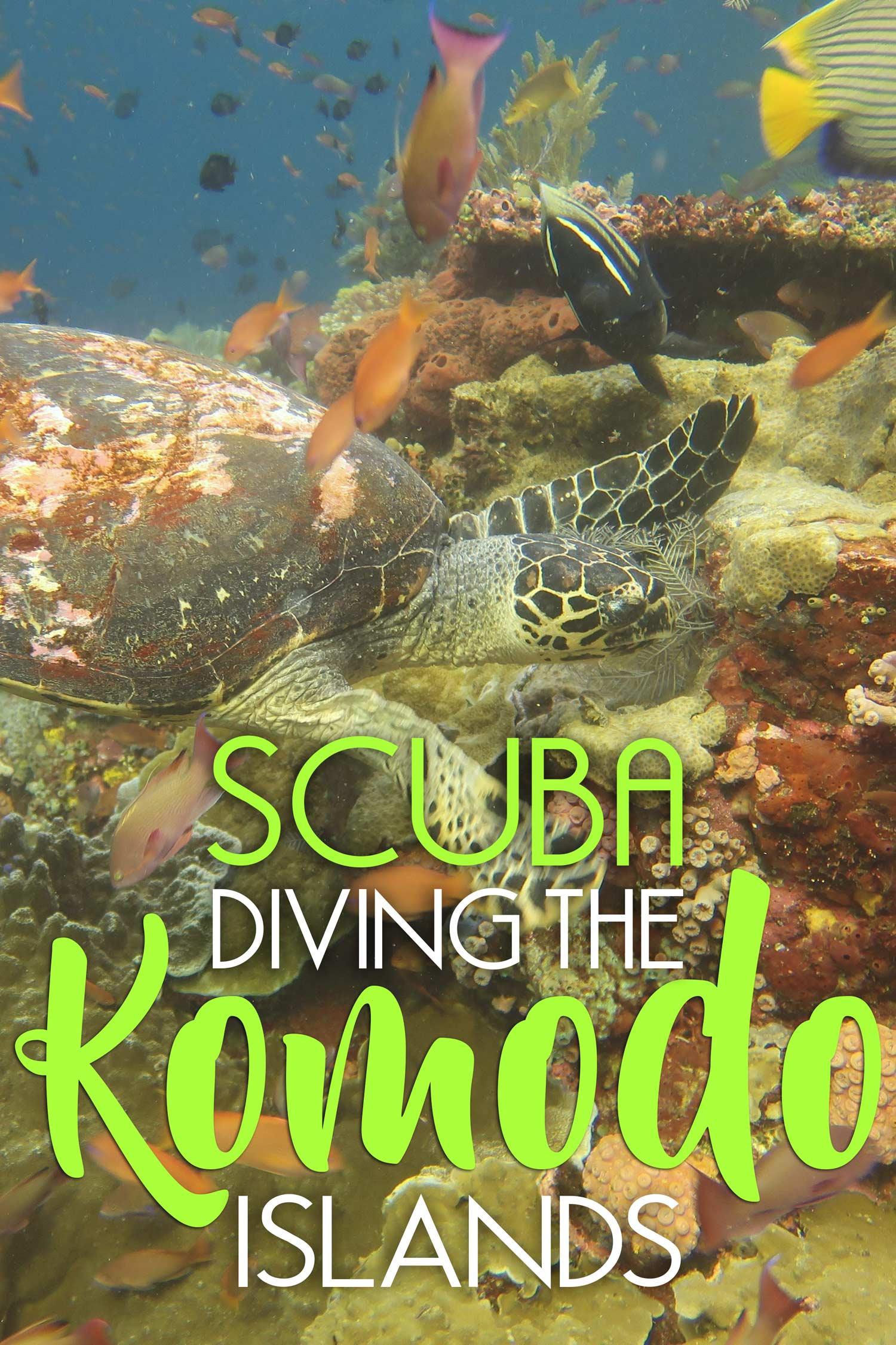 Scuba Diving the Komodo Islands