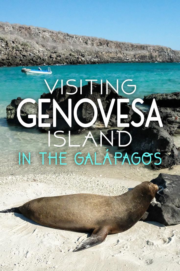 Genovesa Island in the Galapagos