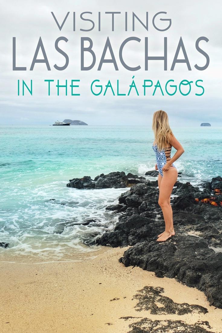 Las Bachas Beach Galapagos