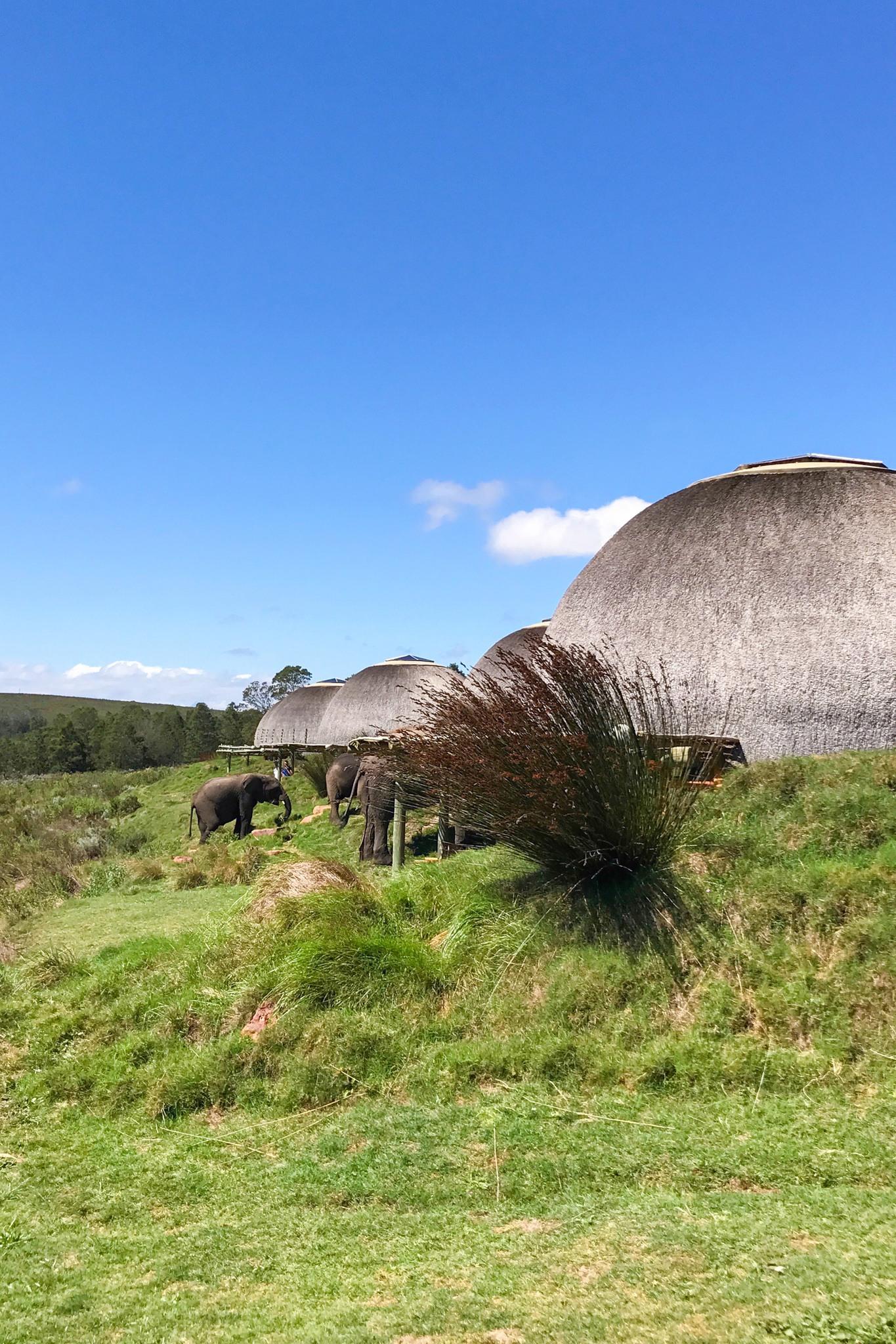 Gondwana Loge