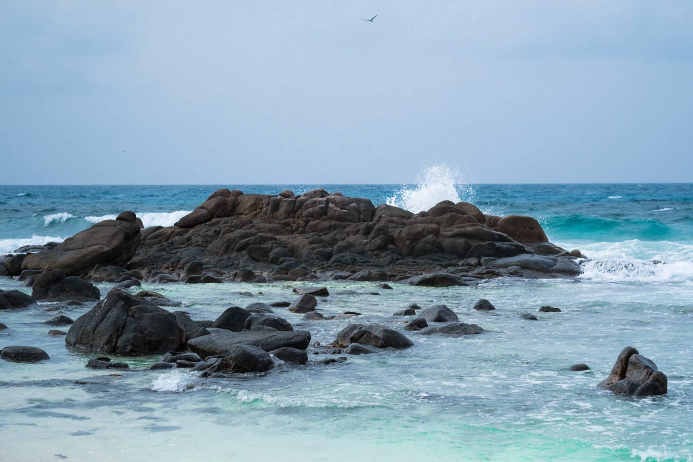DSCF0799-e1550071234123 ▷ El mejor momento para viajar a las Seychelles