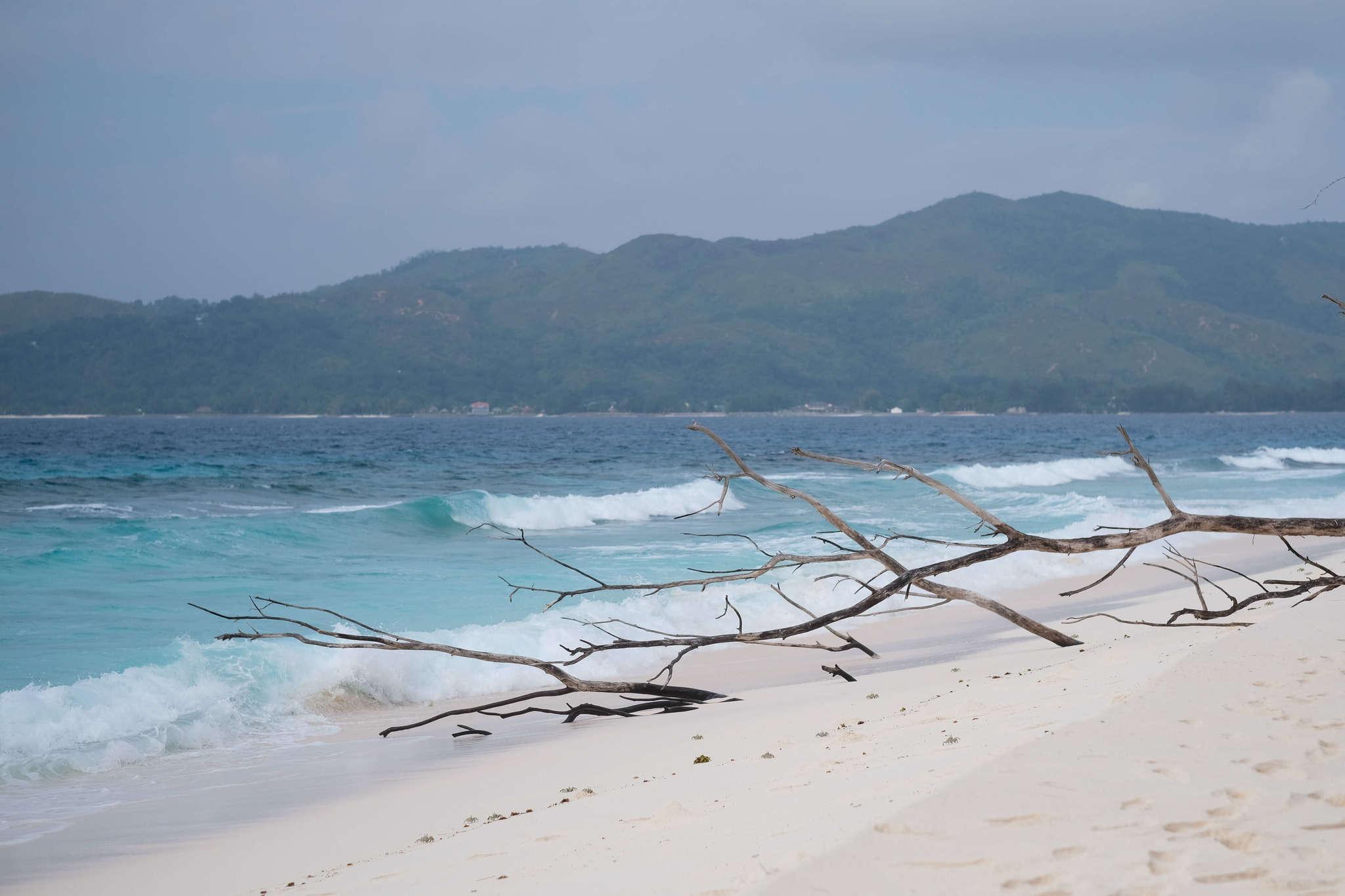 Beach on Cousin Island
