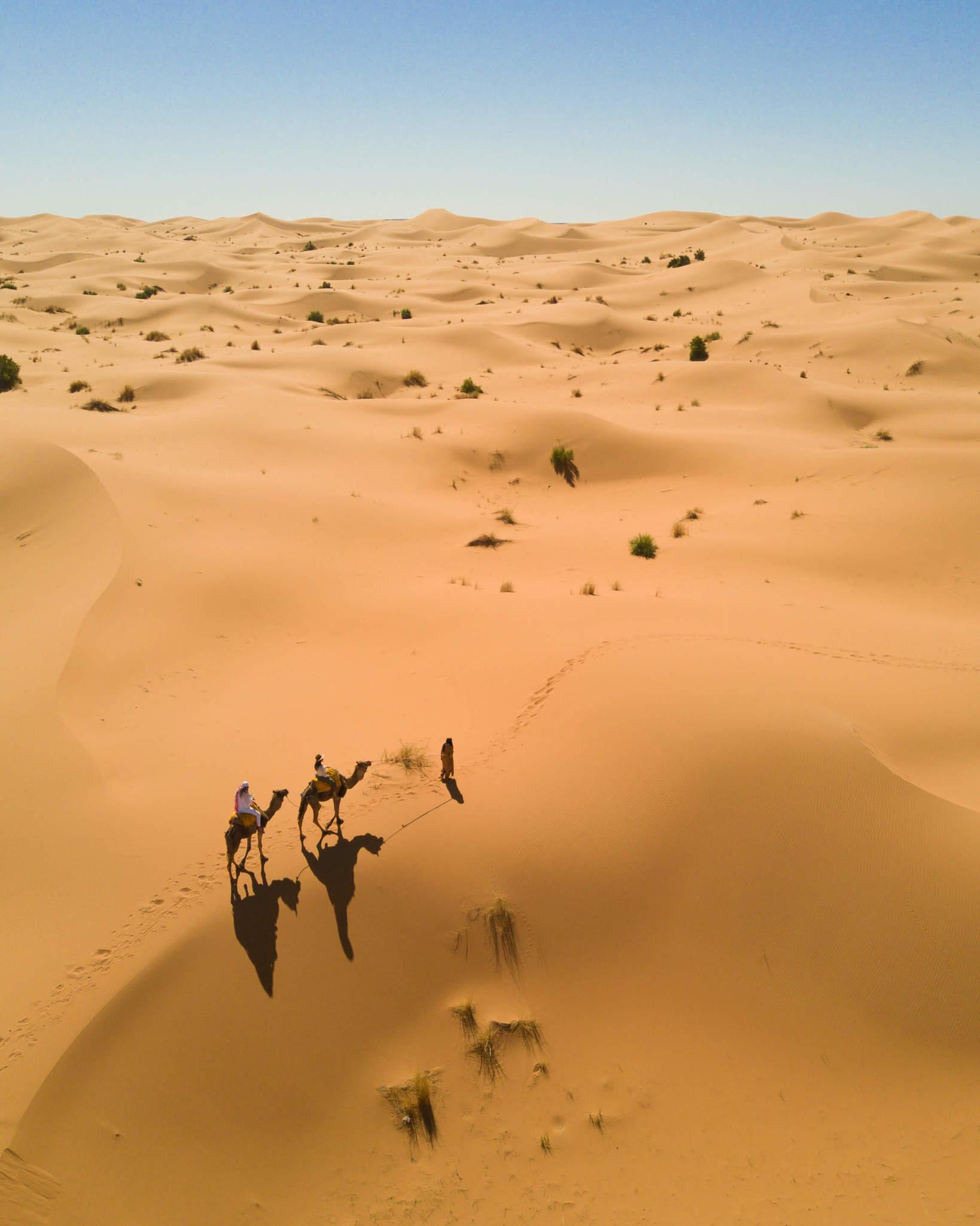 blondes riding camels in sahara desert