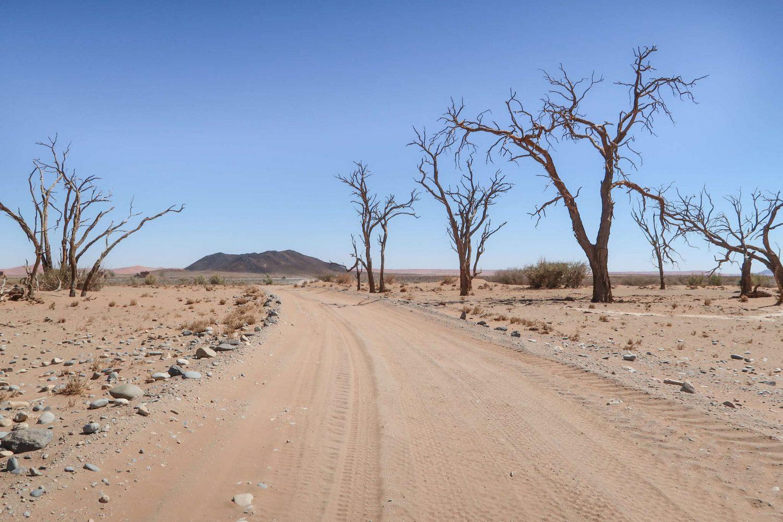 Offroading Namibia