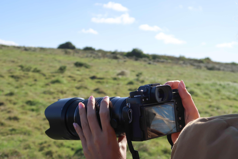 Shooting on safari with Fujifilm X-T2