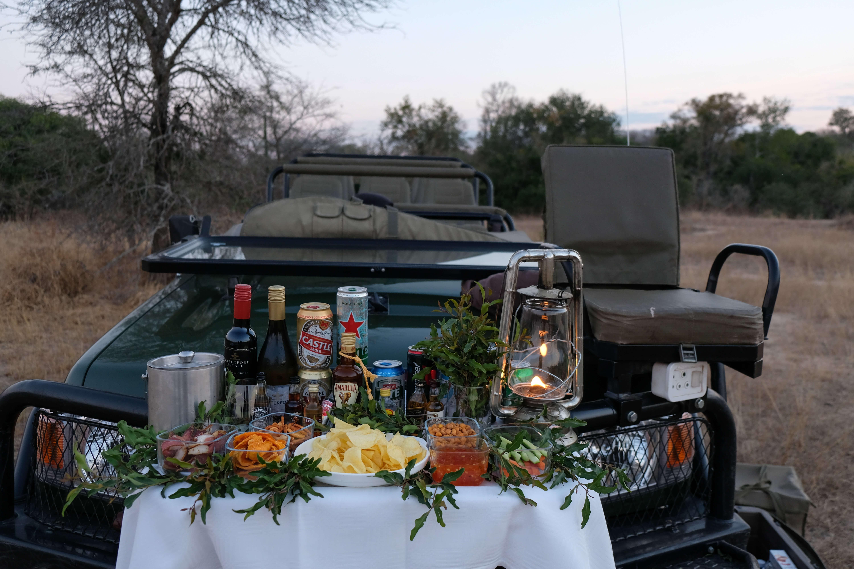 safari picnic at the royal malewane