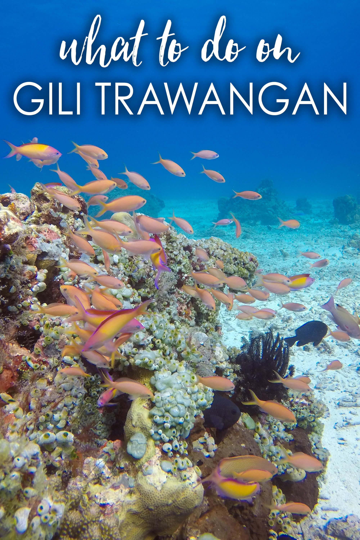 what-to-do on gili trawangan