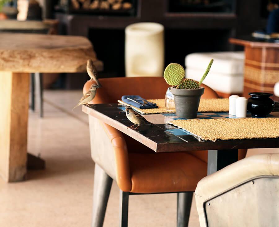 table at fellah hotel