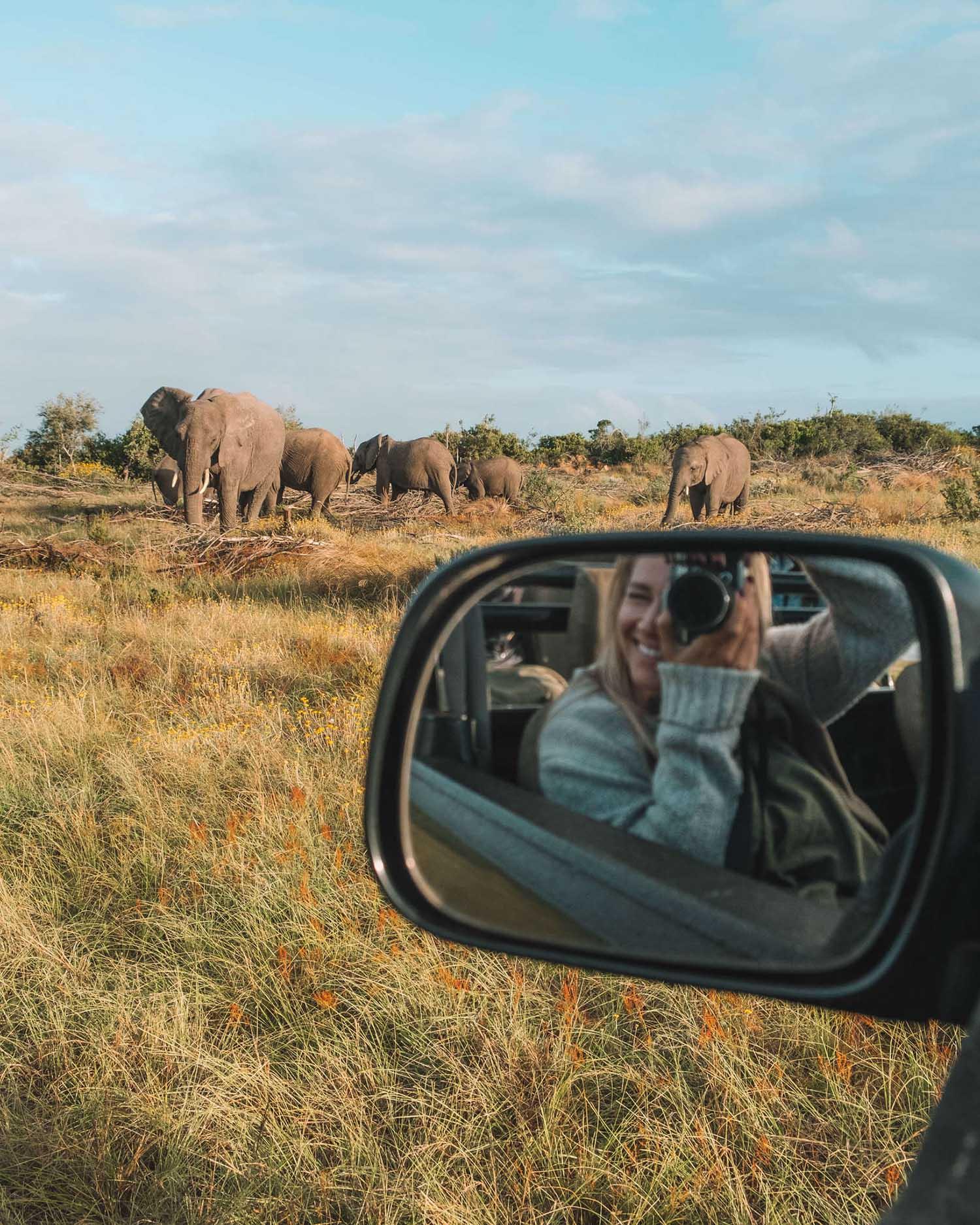 safari destination africa
