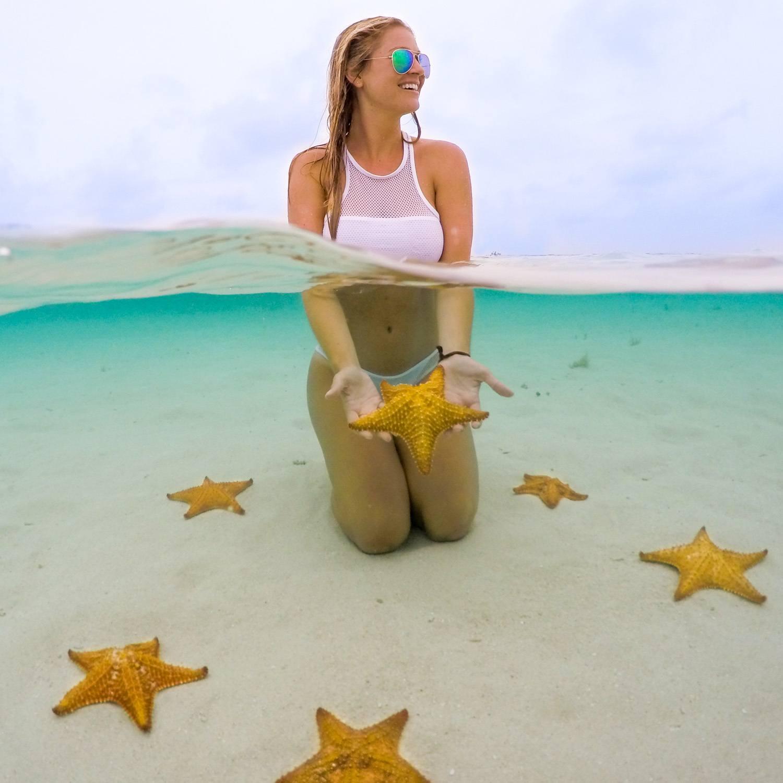 Sea stars on San Blas Island