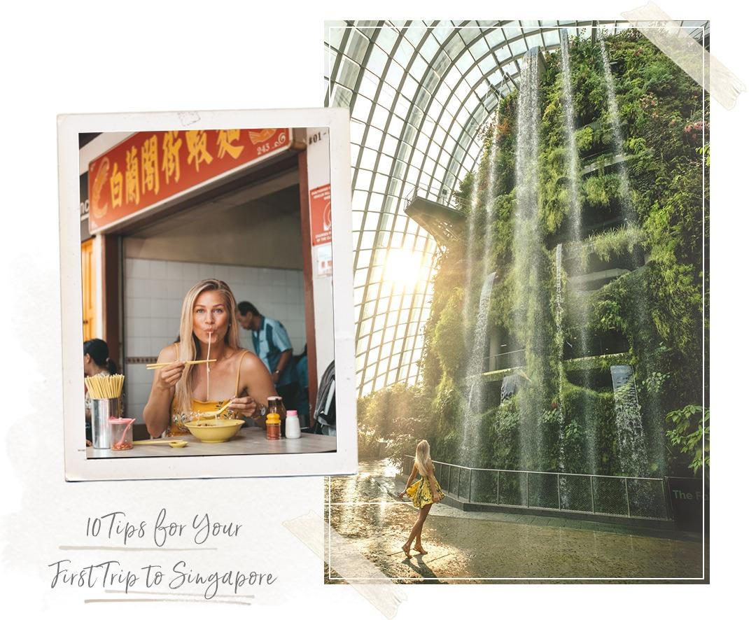 singapore island,singapore zoo,singapore