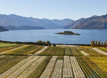 best wine regions in the world