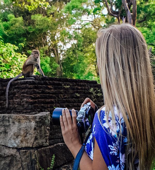 wildlife-4 ▷ Los mejores destinos de vida silvestre en el mundo