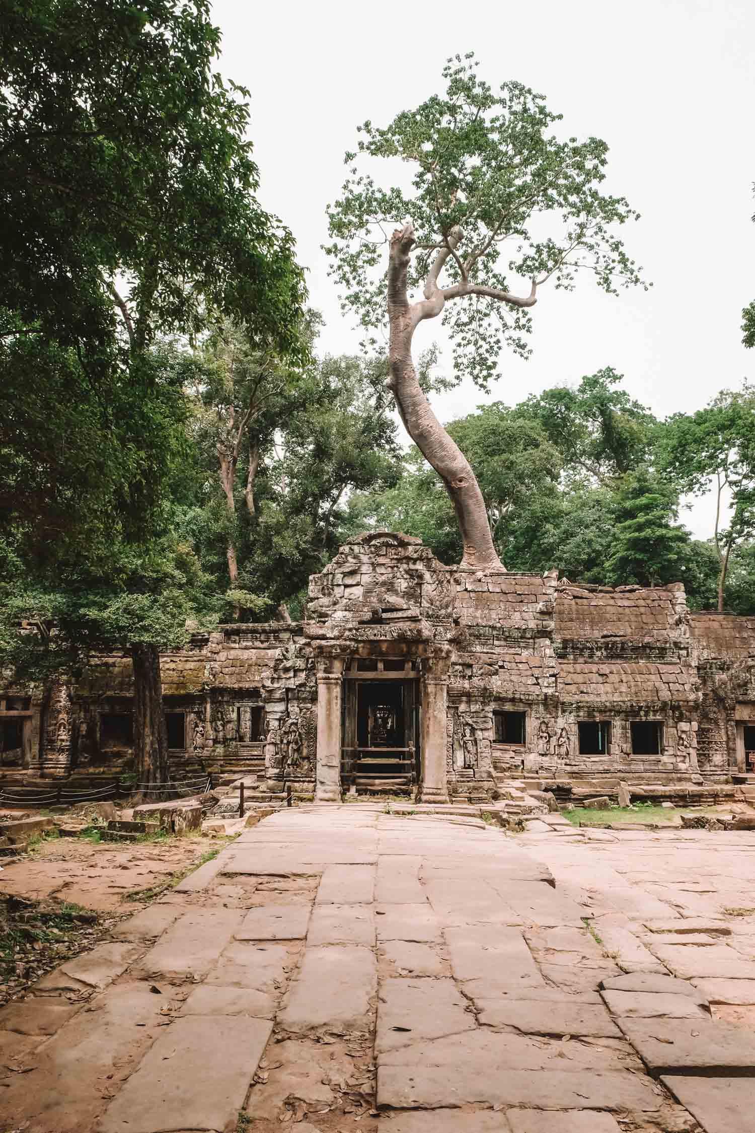 Cambodia Photos-6