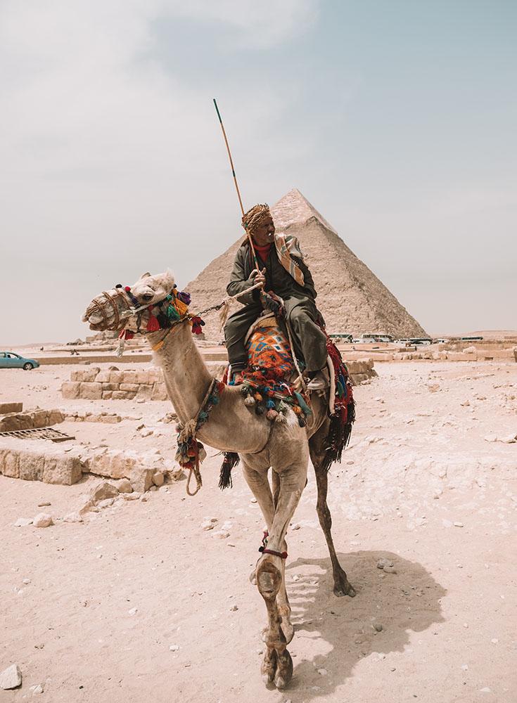 giza-pyramid-camel ▷ Itinerario de 5 días en Egipto para El Cairo y las pirámides