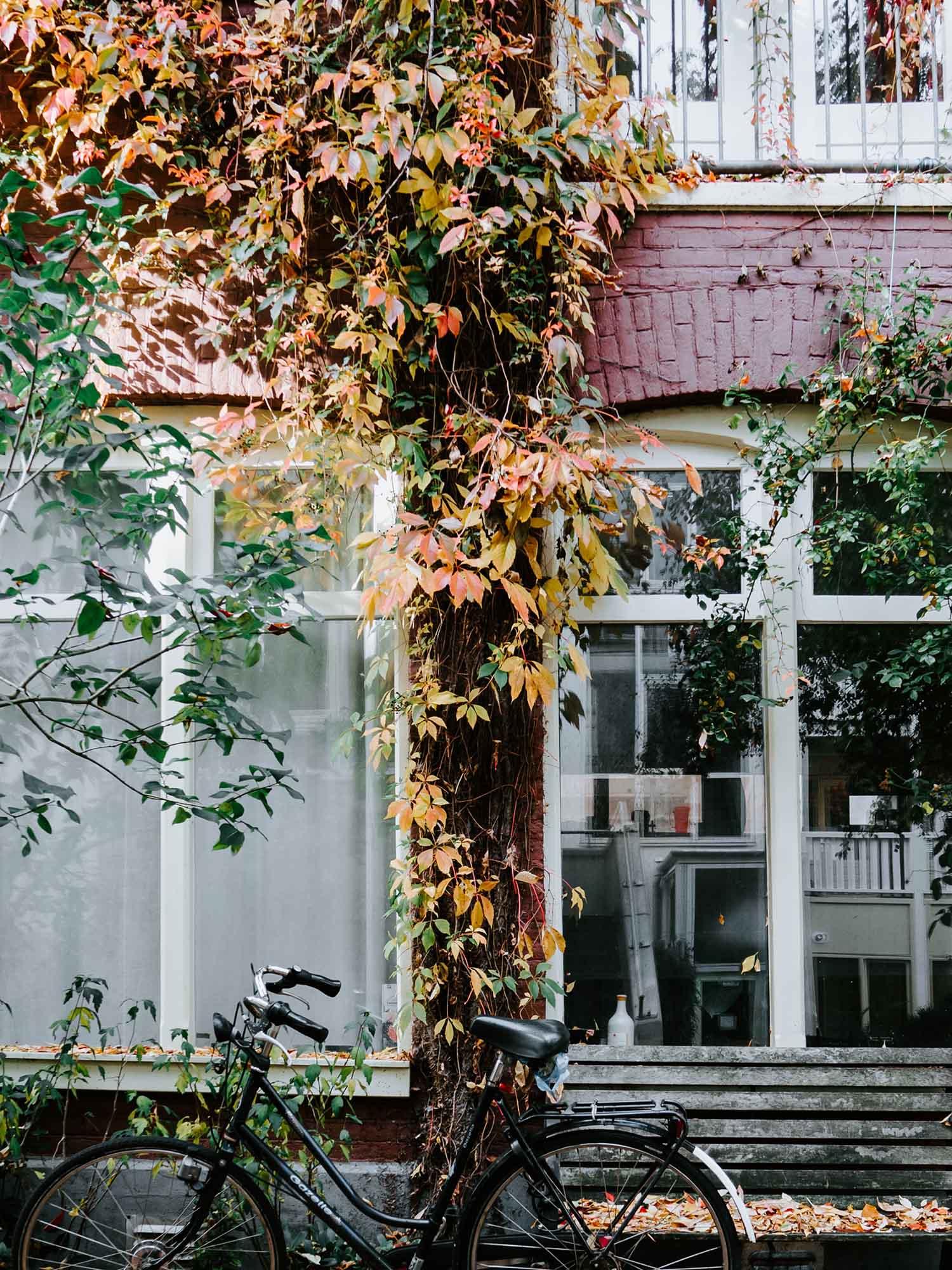 rent a bike amsterdam