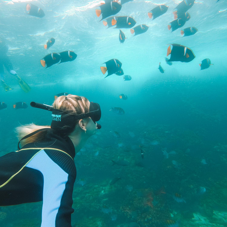 scuba diving snorkeling galapagos island