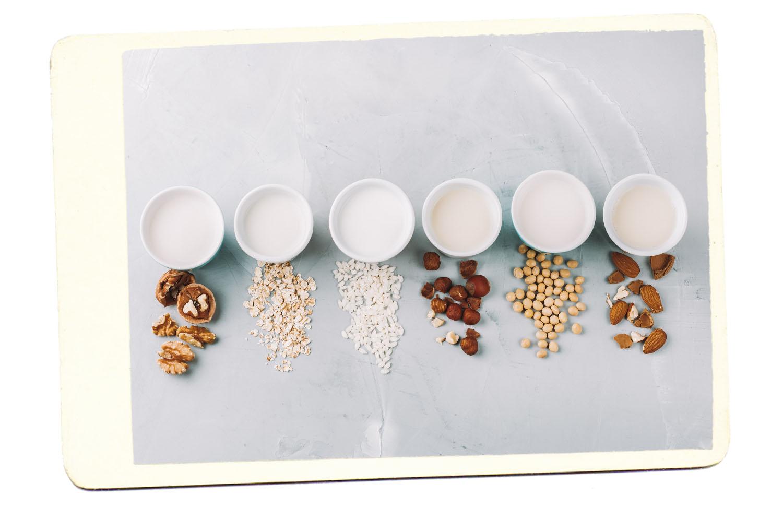 substituts du lait à base de plantes