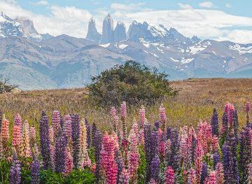 Las Torres peaks
