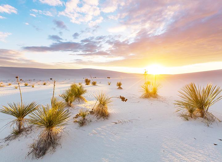 Itinerário de 10 dias para viagem no Novo México - The Blonde Abroad 1