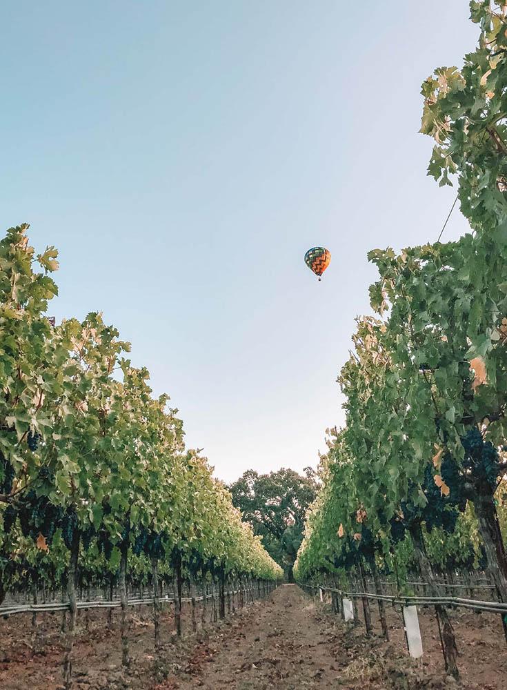 1Hot Air Balloon above Napa Vineyards
