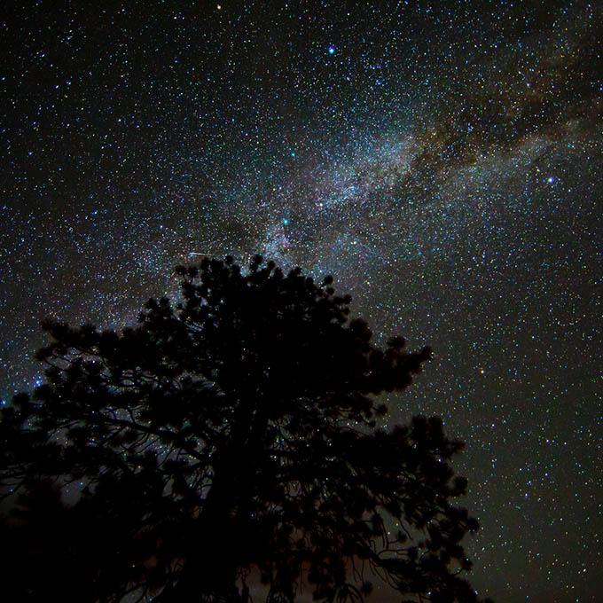 Bryce Canyon National Park Night Sky