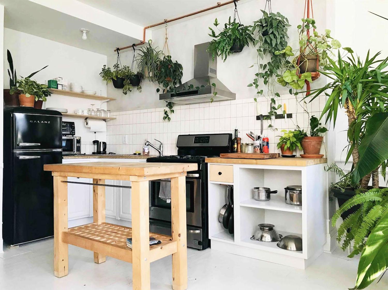 Botanical Plant-Filled Brooklyn Apartment