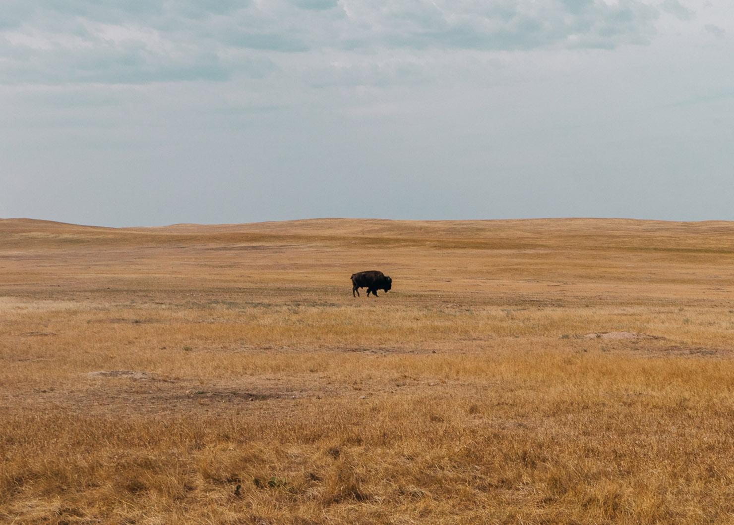 O itinerário final de uma viagem de carro de 3 dias na Dakota do Sul • The Blonde Abroad 4