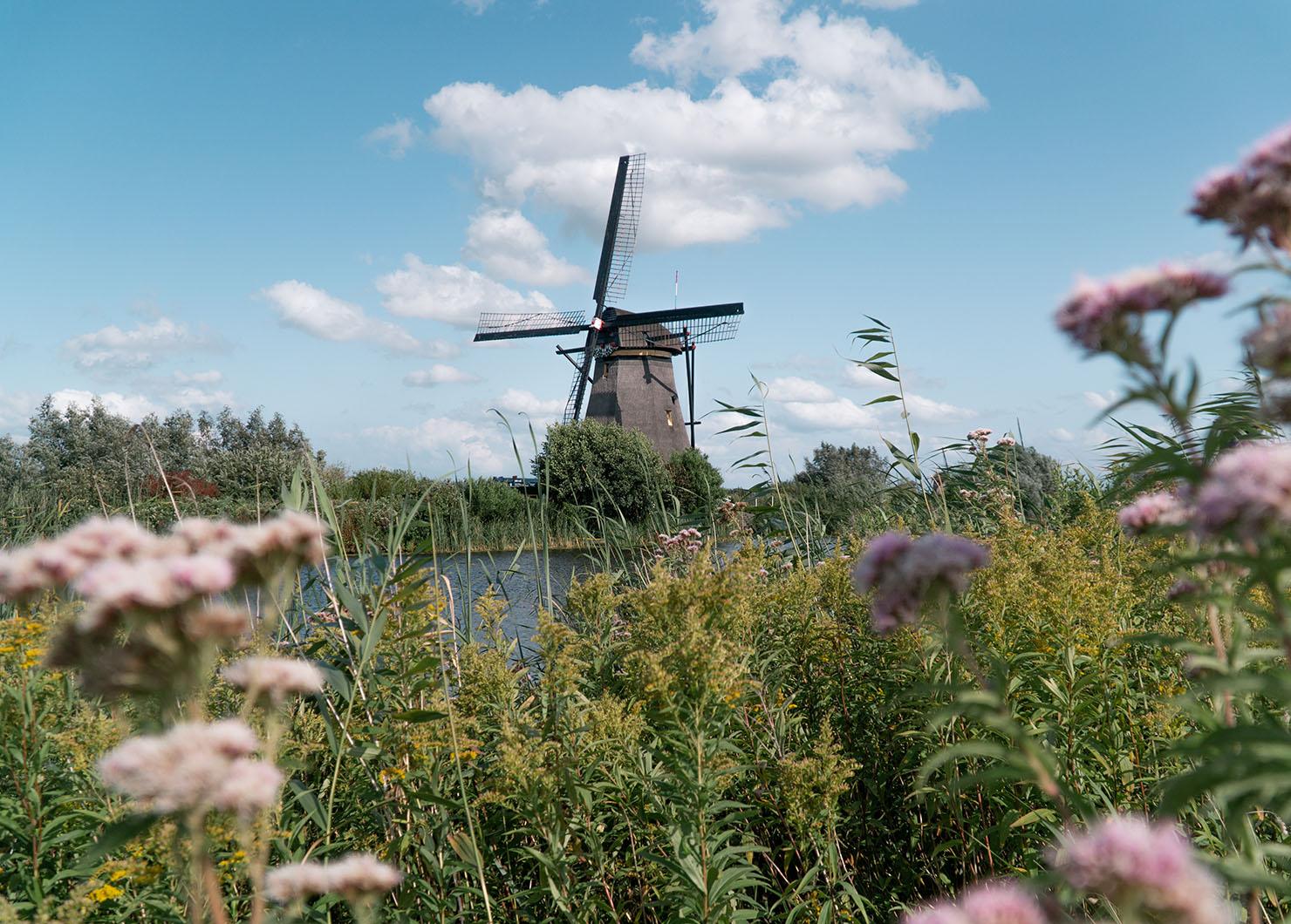 10 lugares para visitar na Holanda (que não são Amsterdã) • The Blonde Abroad 16