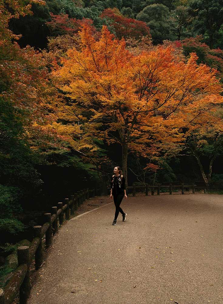 Minoh falls hike 1