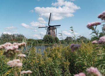 Kinderdijk Windmill netherlands