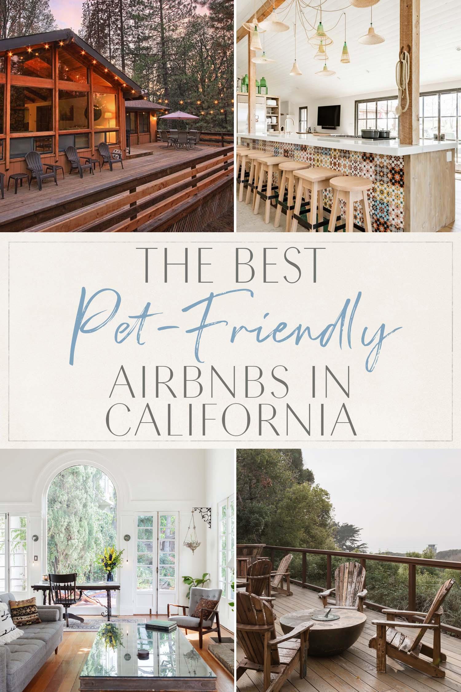 Best Pet Friendly Airbnbs California